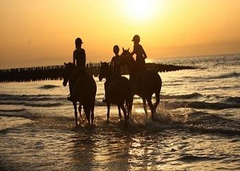 Met mijn beste vrienden paardrijden aan zee